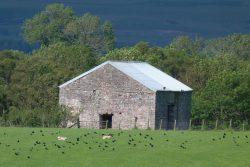 rural-planning-consultancy-2